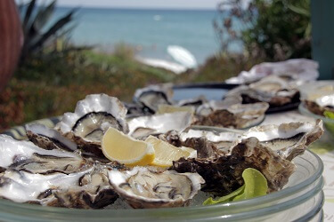 033 oesters
