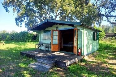 110 trepadeira groen huisje