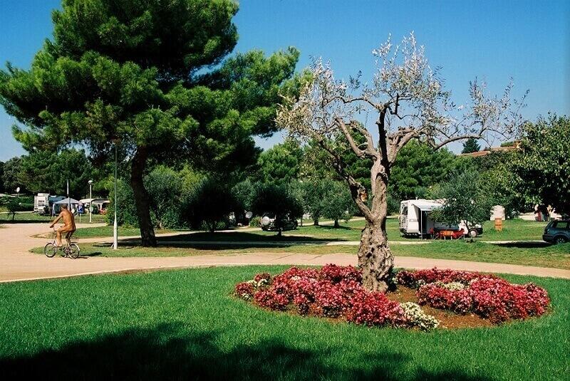 Koversada-Terrein