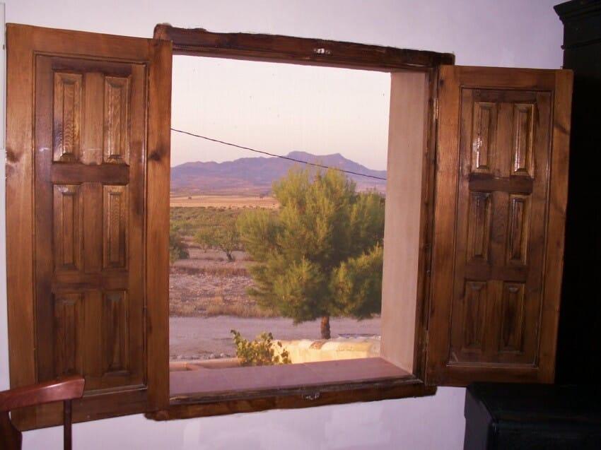 Uitzicht-van-de-kamer-La-Paloma