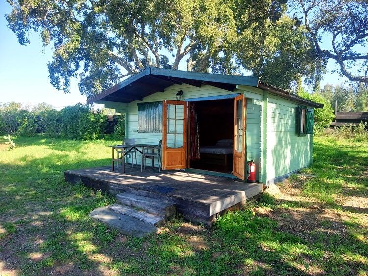 trepadeira groen huisje